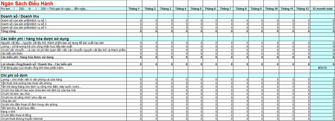 Bảng dự toán ngân sách cho chi phí hoạt động 12 tháng