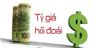 VAS 10 - Ảnh hưởng của việc thay đổi tỷ giá hối đoái